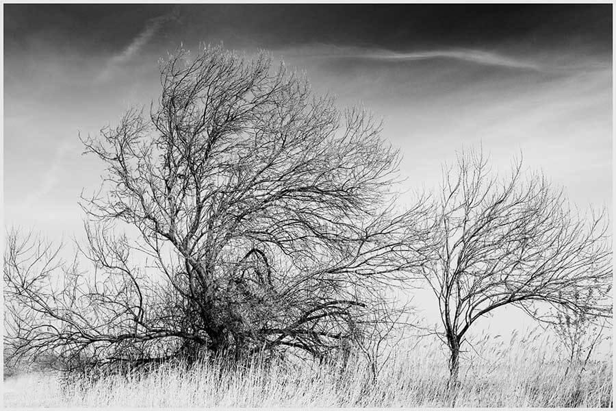 © Roland Molcik mit seinem Schwarz-Weiß-Siegerbild, Kategorie Real